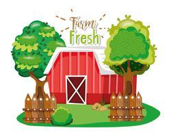 Produtos frescos da fazenda