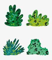 Conjunto de arbustos vetor