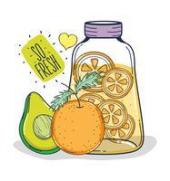 Frutas frescas vetor