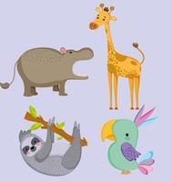 Animais fofos animais selvagens vetor