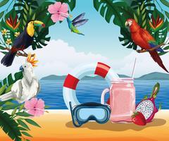 Férias de verão e desenhos de praia vetor