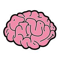 anatomia do cérebro humano para criativo e intelecto vetor
