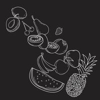 frutas desenhadas à mão vetor