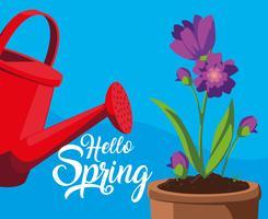 Olá cartão de primavera com flores roxas e pote de plástico de aspersão