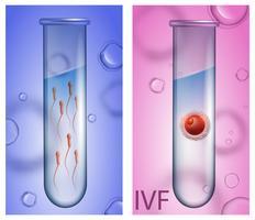 Elementos de Fertilização In Vitro vetor