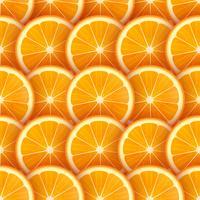 Fundo de vetor de fatias de laranja