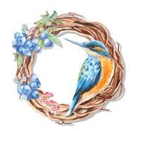 Pintura de beija-flor vetor