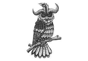 decoração de coruja vintage vetor