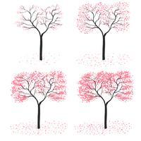 estação da árvore de sakura