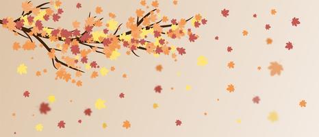 Folhas, cair, árvore vetor