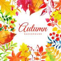 Fundo de folhas de outono aquarela linda multi-colorido vetor