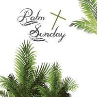 palmeiras de domingo de palma deixa o fundo vetor