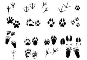 Pacote de vetores de trilhas animais incríveis