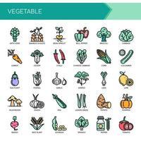 Conjunto de ícones e vegetais de linha fina de cor vetor