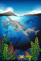 Tubarões nadando sob a paisagem marítima de água vetor