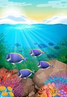 Peixes nadando no fundo do oceano em recifes de corais vetor