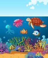 Animais marinhos nadando no fundo do oceano em recifes de corais vetor