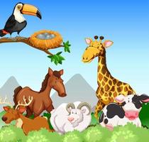 Animais selvagens em um campo vetor