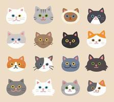 Conjunto de rostos de gato bonito vetor