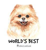 Retrato desenhado em aquarela mão de cachorro Pomeranian