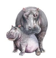 Mãe de aquarela e bebê hipopótamo vetor