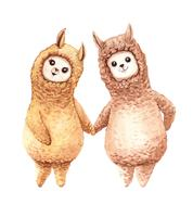 Aquarela de alpaca lama casal de mãos dadas vetor