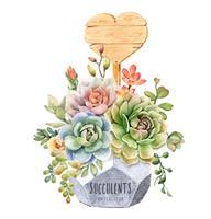 Aquarela de suculentas em vaso de árvore geométrica com placa de madeira de forma de coração.