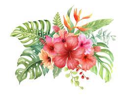 Buquê de hibisco em aquarela elementos.