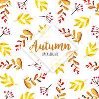 Fundo bonito de folhas de outono em aquarela