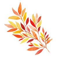 Elemento de folha de outono aquarela bonita vetor