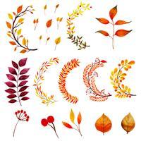 Coleção bonita de folhas de outono em aquarela vetor