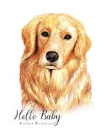 Retrato em aquarela de cachorro Golden Retriever