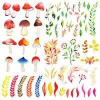 Bela coleção de elementos de outono em aquarela vetor