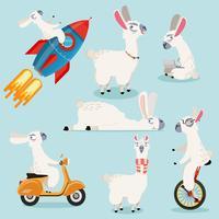 Alpaca bonito coleção de desenhos animados vetor