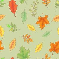 Folhas de outono sem costura padrão vetor