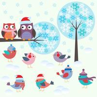 Pássaros e corujas na floresta de inverno