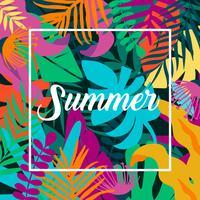 Modelo de cartão de verão vetor