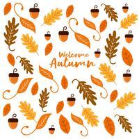 Textura de fundo de nozes e folhas para a temporada de outono