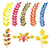 Conjunto de coleção de folhas multicoloridas