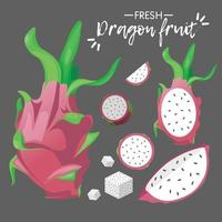 coleção de fruta-dragão fresca vetor