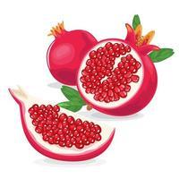 Ilustração de fruta romã fresca