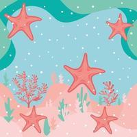 Estrela do mar e coral no fundo do mar
