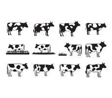Conjunto de coleta de vaca