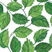 Sem costura padrão floral folha verde vetor