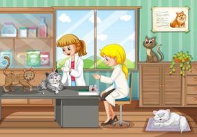 Dois veterinários curando animais no hospital vetor