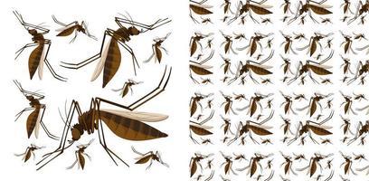 Padrão de inseto sem costura e isolado vetor
