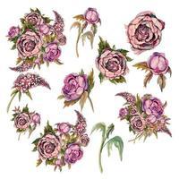 Conjunto de delicadas flores em aquarela. Rosas peônias lilás.