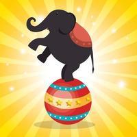 Ícones de show de circo de elefante vetor