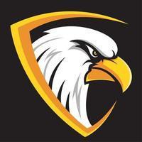 Cabeça de águia no design do escudo vetor