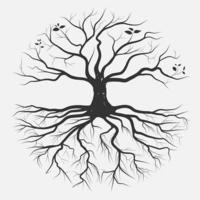 Desenho de mão de raiz circular de árvore vetor